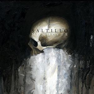 """Saltillo, """"Monocyte"""""""
