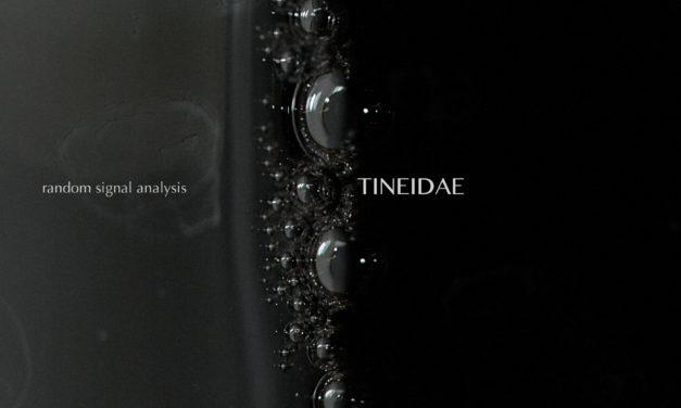 "Tineidae, ""Random Signal Analysis"""