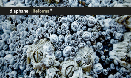 "Diaphane, ""Lifeforms"""