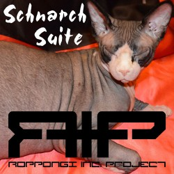 Roppongi Inc. Project - Schnarch Suite