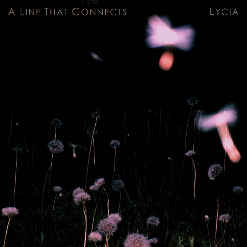 "In Conversation: Lycia, ""A Line That Connects"""