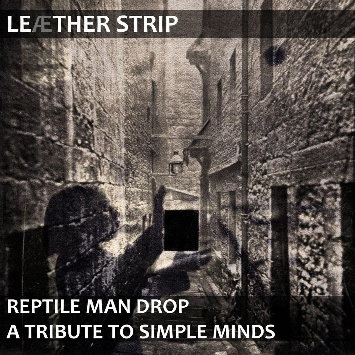 Leaether Strip,