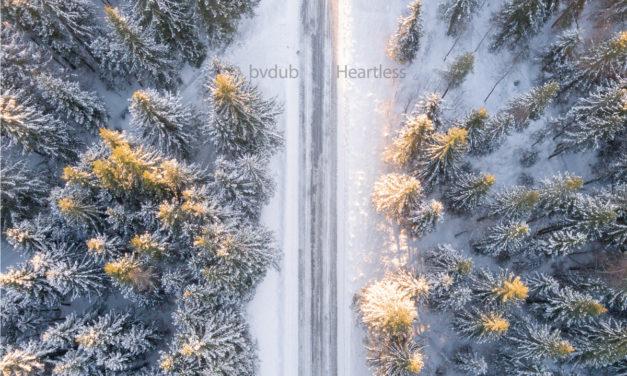 Observer: bvdub & raison d'être + Troum
