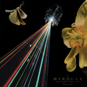 Miracle - The Strife Of Love In A Dream