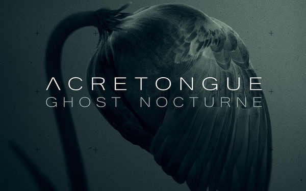 "Acretongue, ""Ghost Nocturne"""